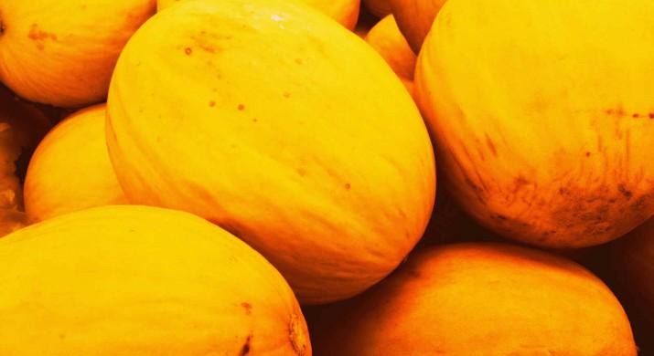 Estratégia vai inserir melão potiguar no mercado chileno